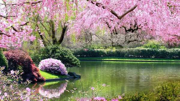 Image result for springtime