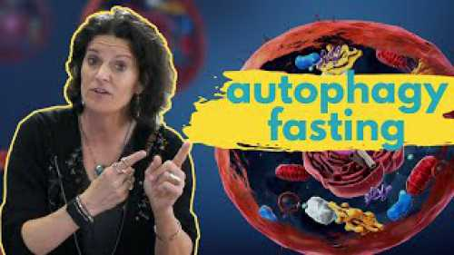 Autophagy and Fasting: The Mystery Explained - IslamiCity