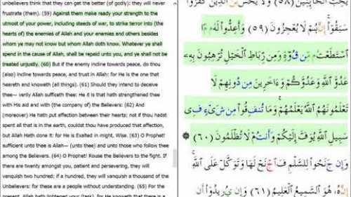 Videos - IslamiCity